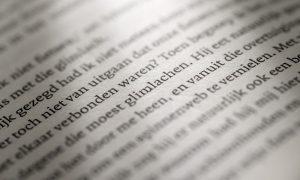 Schrijven is mijn passie. Als onderdeel van een communicatietraject of als losse opdracht. Mijn visie: van veel lezen word je een betere schrijver. Op de foto zie je een pagina uit het prachtige boek 'Hier wonen ook mensen' van Rob van Essen.